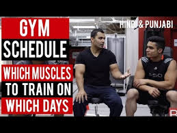 gym schedule which muscle to train on what day of week hindi punjabi