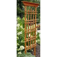 My Garden Trellis  Make Your Garden BeautifulClimbing Plant Trellis