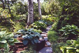 Small Picture Shade Garden Design GardenForumscom