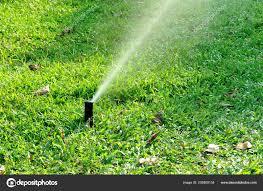 garden irrigation system spray watering lawn stock photo