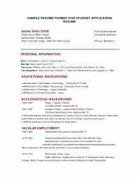 Personal Background Sample Resume Elegant Personal Profile