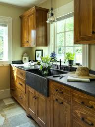 kitchen cabinets green kitchen cabinets ikea black and white