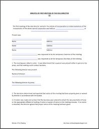 Minutes Of The Meeting Sole Director Initial Meeting Minutes Free Template