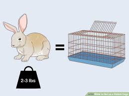 when they need to sleep image titled set up a rabbit cage step 2