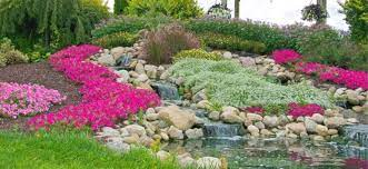 how to build rock gardens everything