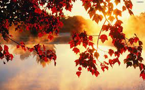 Fall Scenery Wallpapers (52+ best Fall ...