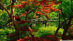 46+] Japanese Garden Wallpaper Free on ...