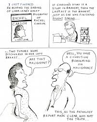 rachel s war a cartoon essay on rachel carson s last years acirc bill rachel2