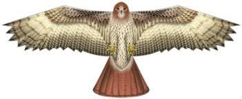 Sutton Ag Birds Of Prey Supersize Hawk Kite
