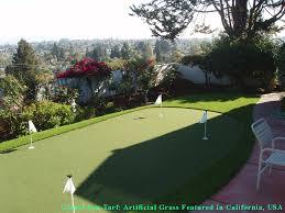 fake grass carpet indoor. Fake Grass Carpet Mead Valley, California Indoor Putting Greens, Backyard Design R