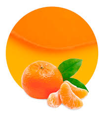 Mandarin Tangerines Mandarin Juice Concentrate Supplier Lemonconcentrate