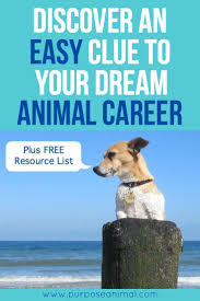 17 best images about career change employee benefit a unique clue to your dream animal career