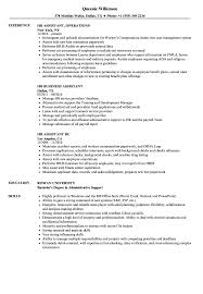 Effective Resume Examples 2016 Assistant HR Resume Samples Velvet Jobs 52