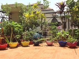 Balcony Garden Design Ideas India EO Furniture
