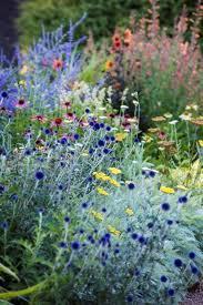garden perennial garden garden