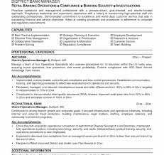 Exelent Bank Resume Samples Motif Documentation Template Example