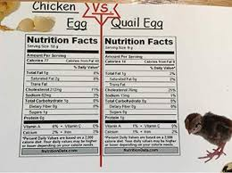 Chicken Egg Nutrition Chart Nutrition Quail Egg Nutrition Facts