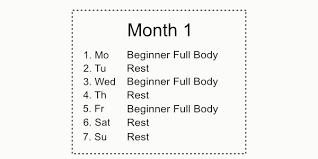 The Essential 6 Month Calisthenics Workout Plan Bar