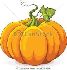 pumpkin drawing. autumn pumpkin - illustration of drawing