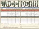 Timber Creek Golf Club - The Pines to Timber Trails - Course ...