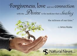 Divine Love Quotes Unique Divine Love Quotes Prepossessing Forgiveness Love And Our Connection