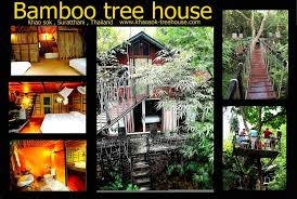 Khao Sok Tree House Resort  Picture Of Khao Sok Tree House Resort Khao Sok Treehouse