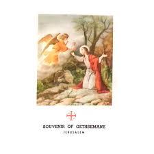 vine holy card booklet with olive tree leaf from gethsemane