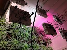 Apache Tech Grow Lights Full Apache Tech Garden 8x12 1900w Thcfarmer