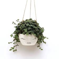 decorative wall planters mounted flower pots off the wall metal hanging pots wrought iron wall planter