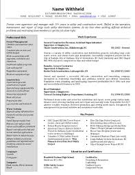 project manager resume construction project manager resume sample      handyman resume sample