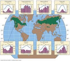 Taiga Temperature Chart Taigas Climate Chart Taiga
