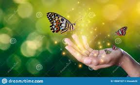 картинка бабочка и руки