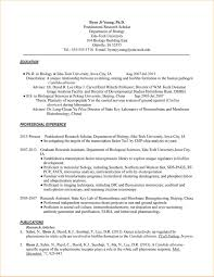 Resume Format For Phd Application Resume Template Ideas