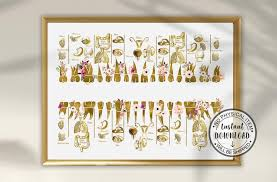 Meridian Tooth Chart Tooth And Organ Relationship Chart Acupuncture Meridian Holistic Dentist Gift Holistic Dentistry Art Dentistry Art
