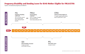 Fmla Cfra Pdl Chart California Maternity Leave How To Milk It Tales From A