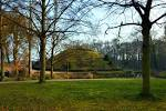 Free Images : landscape, tree, grass, lawn, meadow, sunlight, leaf ...