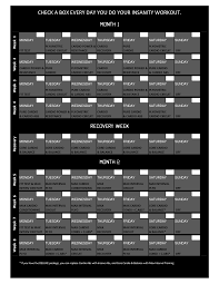 Insanity Workout Wall Calendar Insanity Workout Schedule