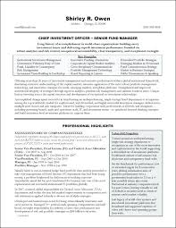Best Resume Formats Awesome Examples Cv Objectives Curriculum Vitae Examples Templates Legal