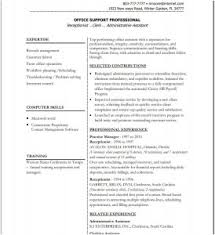Cover Letter Beautiful Executive Resume Templates Example Online Cv