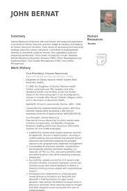 Vice President Human Resources Resume Samples Visualcv Resume