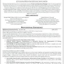 Professional Resume Writers After Example Of Resume Writing