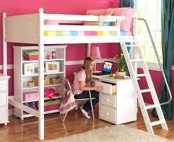 Bunk Bed With Slide Ikea Loft Bunk Bed Slide Bunk Bed Slide Ikea