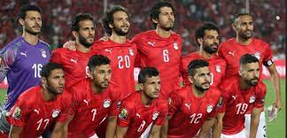 مدرب نيجيريا يشيد بثنائي منتخب مصر