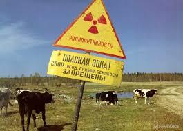 Экологические проблемы России и какие существуют пути их решения Несвоевременная его замена может привести к серь Радиактивная обстановка
