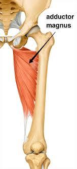 ischial tuberosity pain syndrome treatment