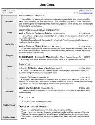 Vita Resume Template Curriculum Sample Vitae Cv Template Printable