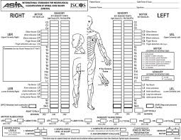 Spinal Cord Injury Chart Scoring Sheet For The International Standards For