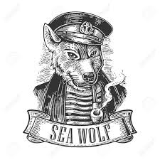 Vintage Illustrations Sea Wolf With Pipe And Ribbon Vector Engraving Vintage