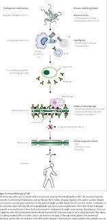 Clinical features, pathogenesis, and ...
