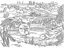 Coloring Page Wild Animal Coloring Pages